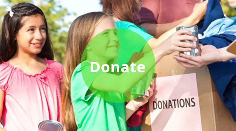 Donate to the LSA Civic Society
