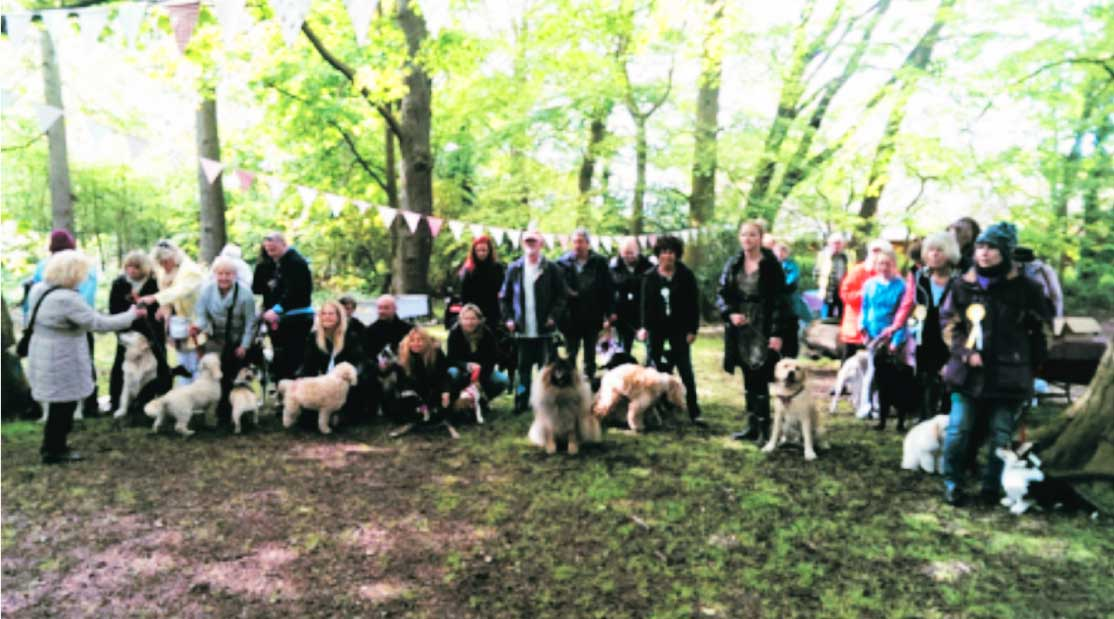 LSA Civic Society and dog walkers in Witchwood