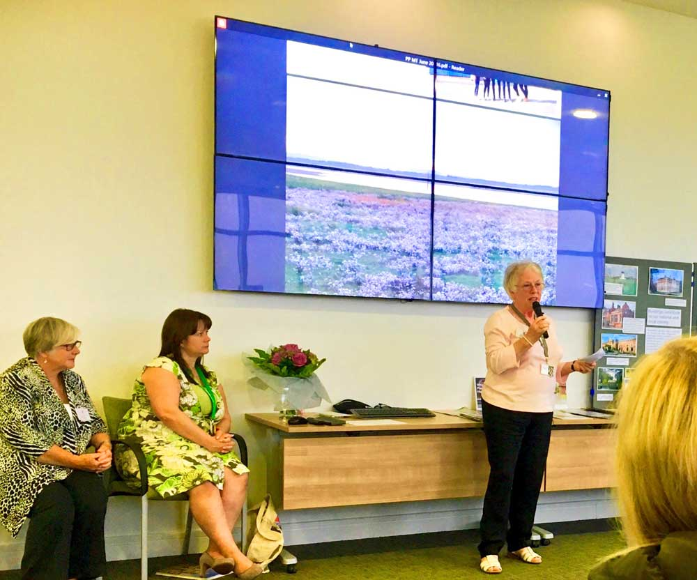 LSA Civic Society Chair Marion Coupe revealing plans for the development - July 2016