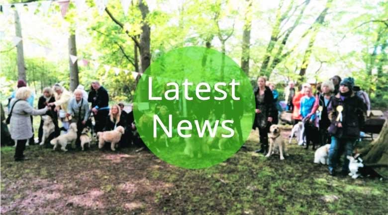 Latest LSA Civic Society news